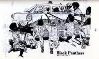 blackpantherpaty_p129146.jpg