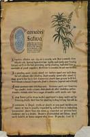 cannabis_poster.jpg