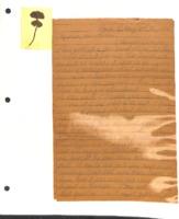 Box 2 folder 8 1892-5-13.pdf